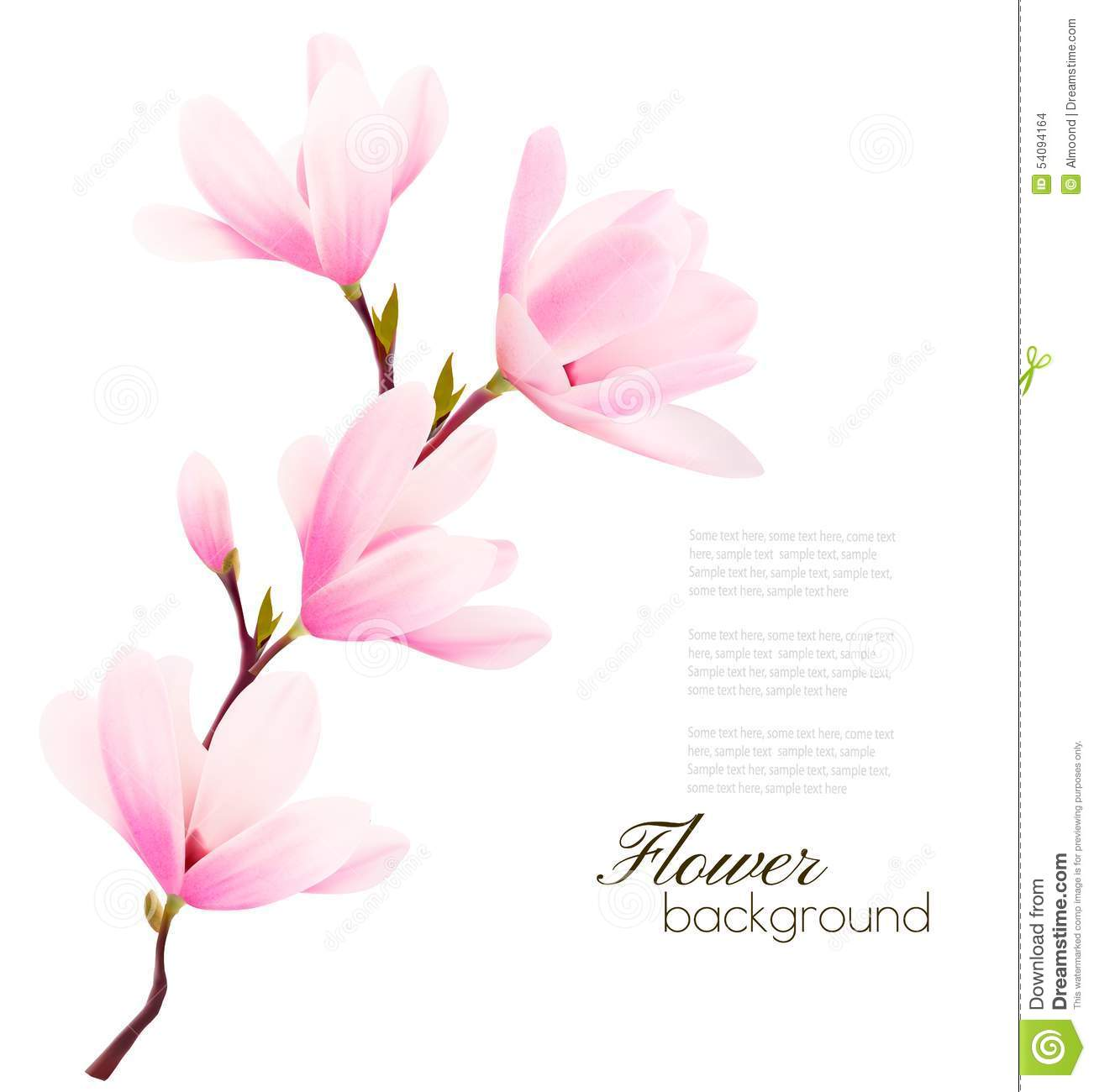 Flower Background With Blossom Branch Of Pink Flowers Stock Vector