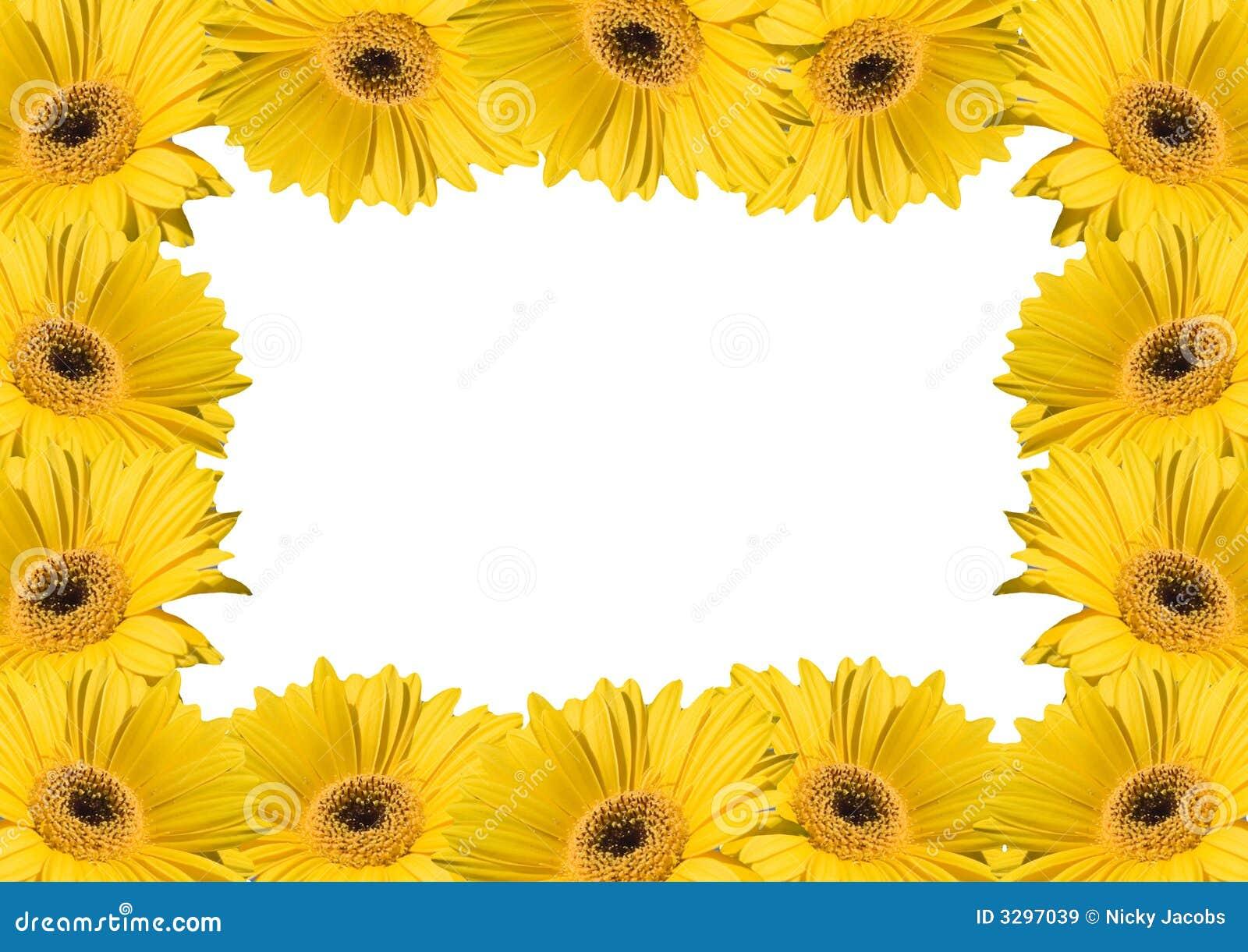 Flower Background Frames Stock Photo 3297039 - Megapixl