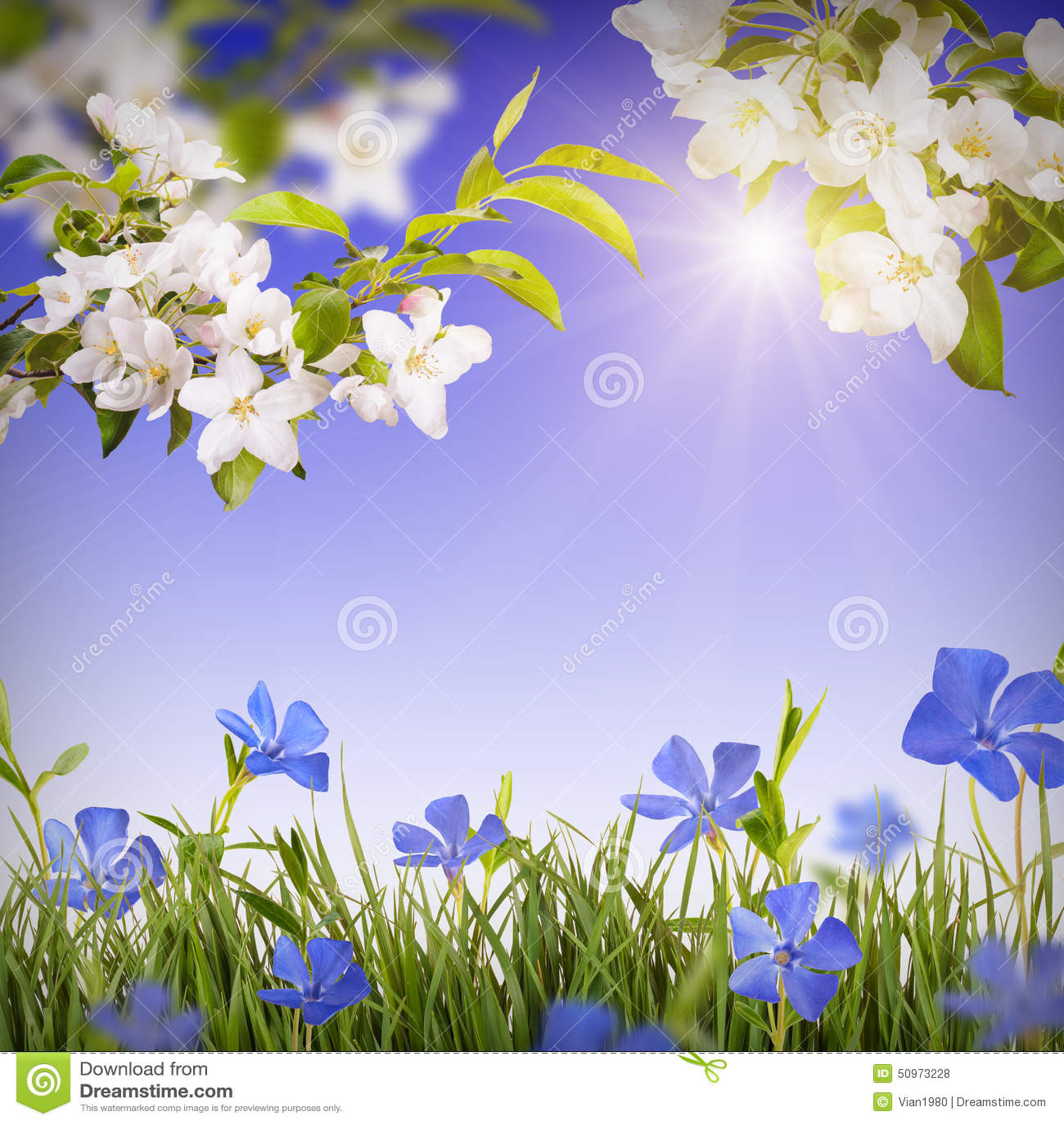 Flower Background Stock Photo. Image Of Bokeh, Fresh