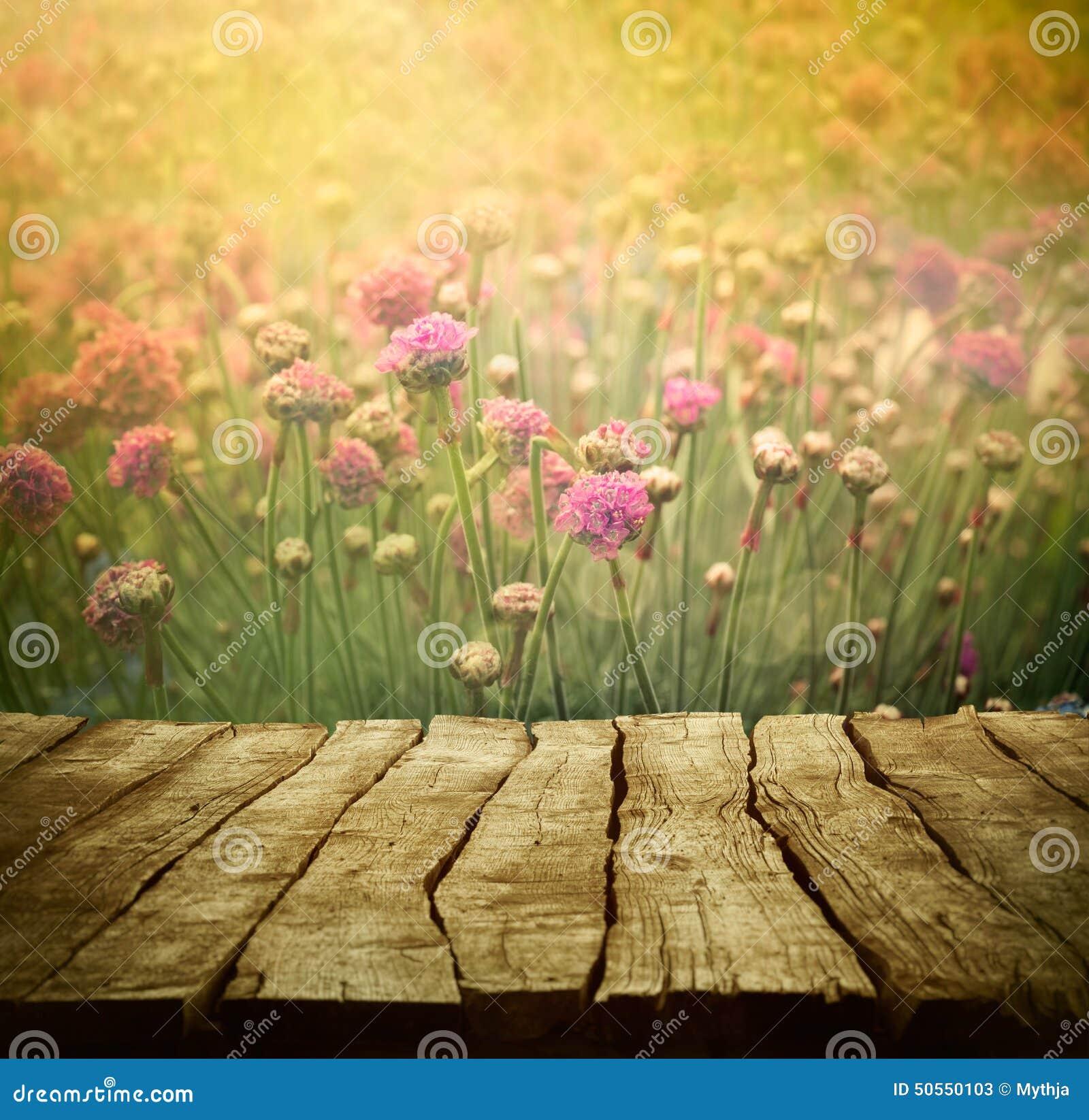Flower Background Stock Image Image Of Garden Floral 50550103