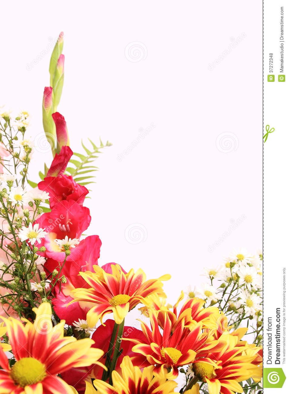 Flower background stock photo image of frame nature for Plans for a flower garden layout