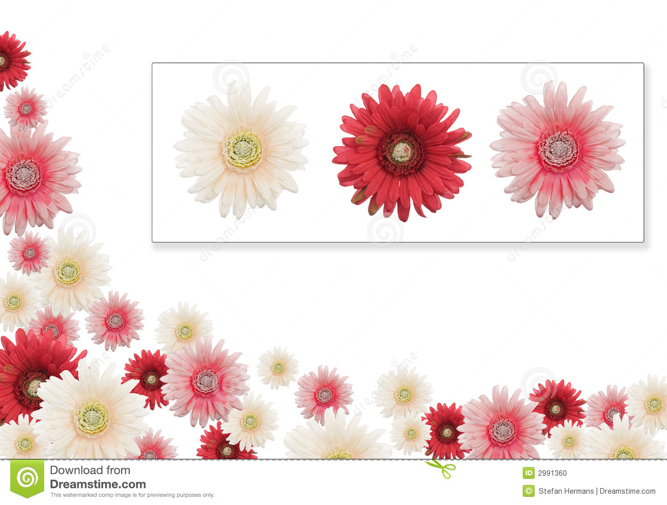 Pink, red and white daisy banner with the 3 flowers used attached ...