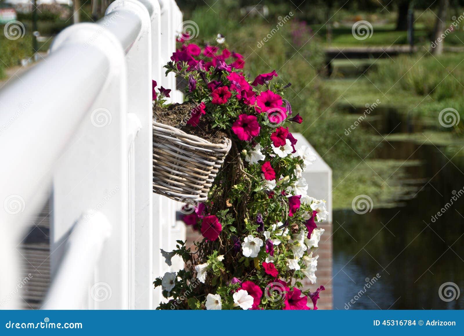 Hanging Flower Baskets Railings : Flower baskets hanging on the railing of a bridge stock