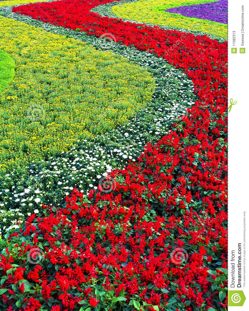 Flower Bed Stock Photos - Image: 11082313