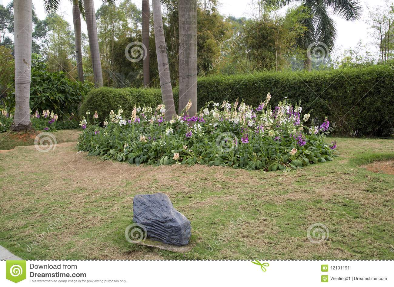 Flower Bed Around Trees Design In The Flower Park Stock Image Image Of Bush Bloom 121011911