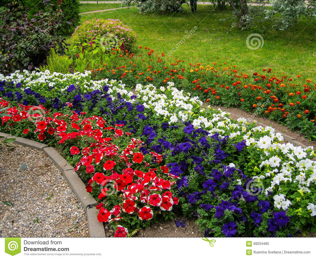 A flower bed in the garden stock photo image 69254485 for Ornamental trees for flower beds