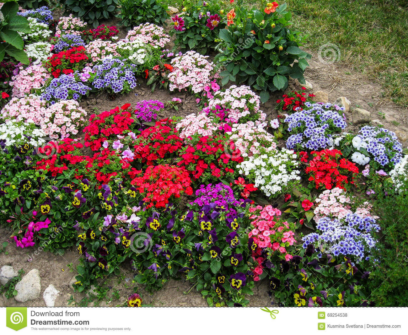 A flower bed in the garden stock photo image 69254538 for Ornamental trees for flower beds