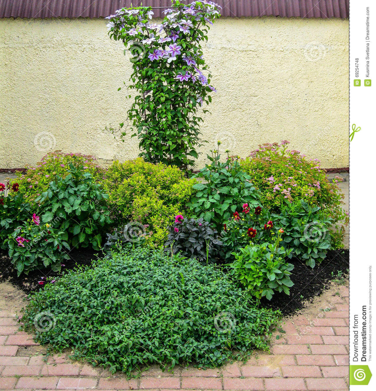 A flower bed in the garden stock photo image 69254748 for Ornamental trees for flower beds