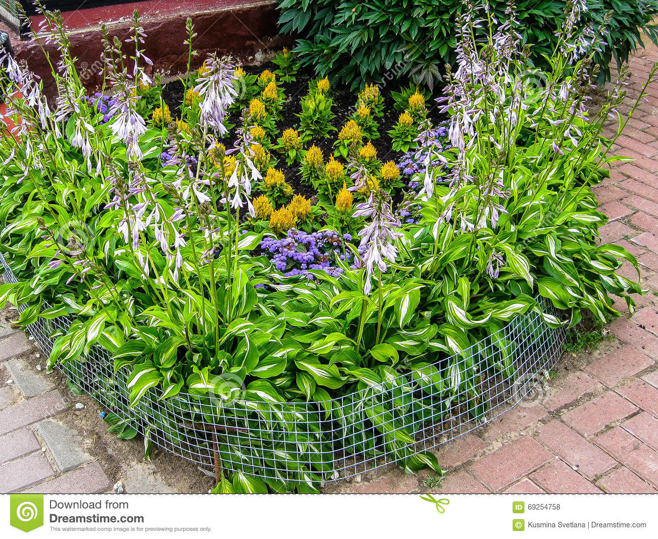 A flower bed in the garden stock photo image 69254758 for Ornamental trees for flower beds