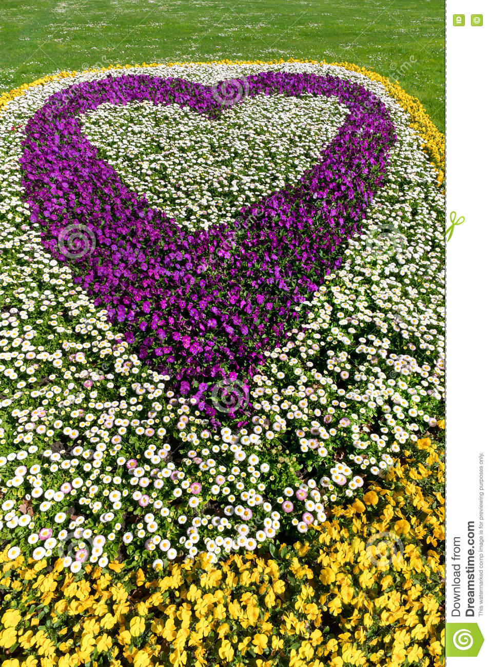 Flower bed in heart shape stock photo image 72767022 for Flower bed shapes designs