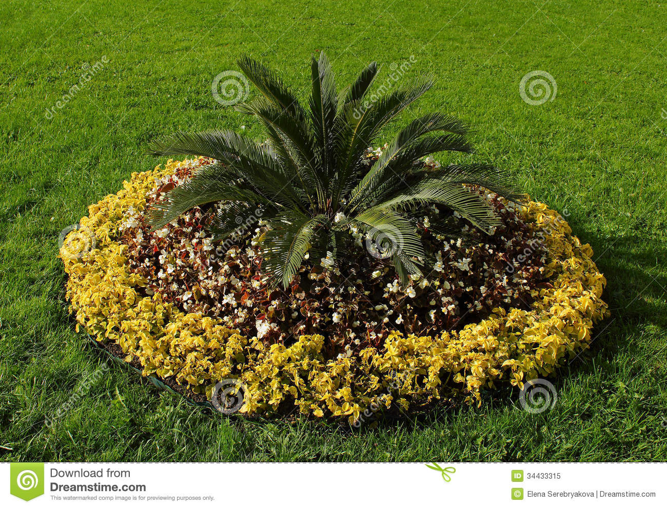 Flower-bed Royalty Free Stock Photo - Image: 34433315