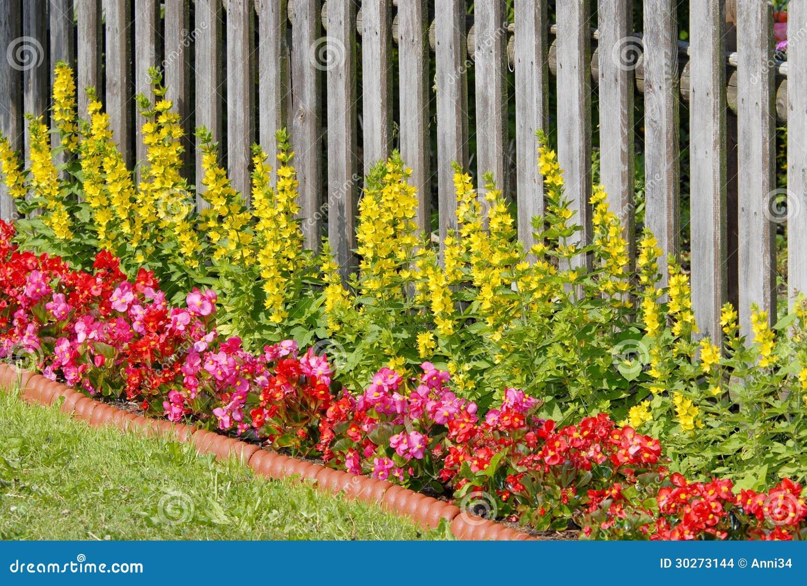 Flower Bed Stock Photo Image Of Wood Summer Park Border 30273144