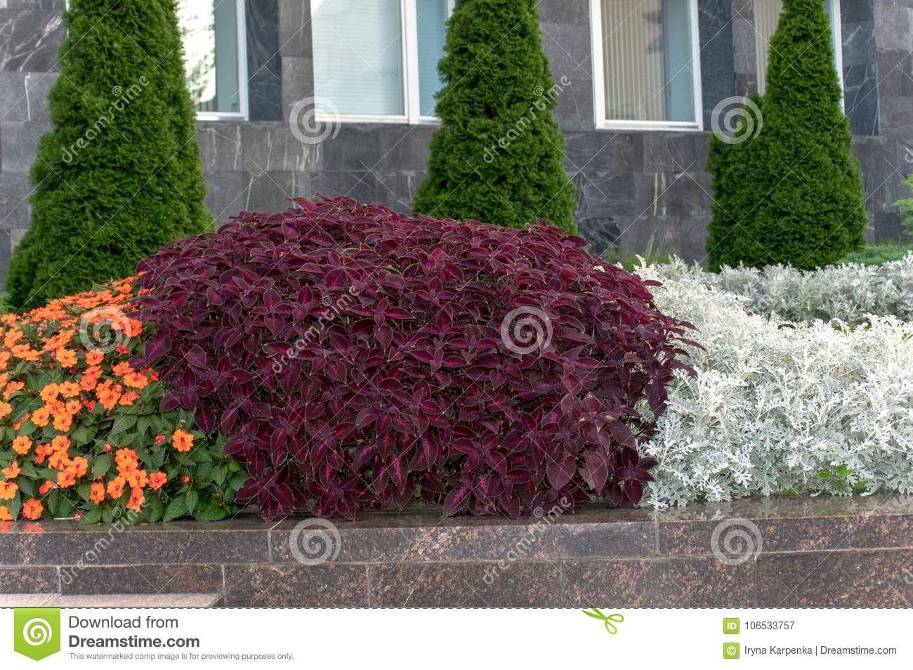 Flower beds with various flowers and plants stock image image of download flower beds with various flowers and plants stock image image of spring garden mightylinksfo