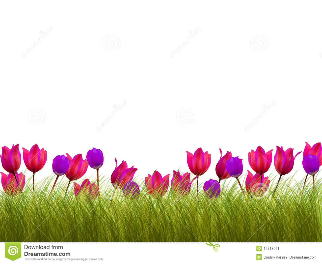 Flower Border Stock Illustration Of Beauty