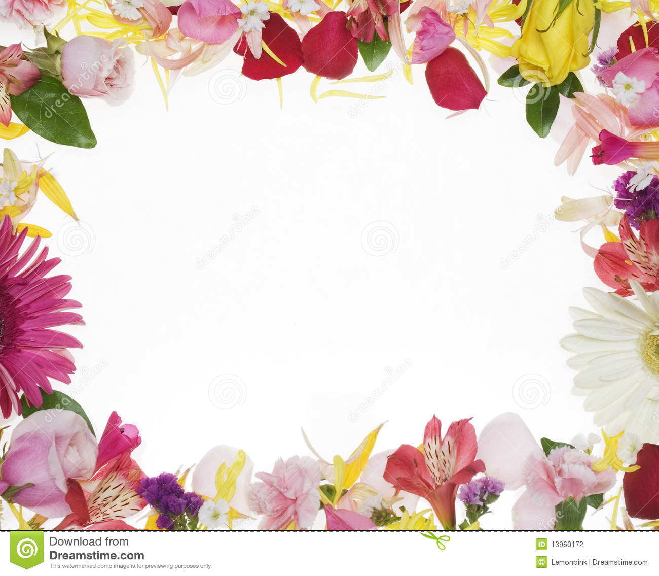 Writing Wall Art Stickers Flower Border Stock Photography Image 13960172