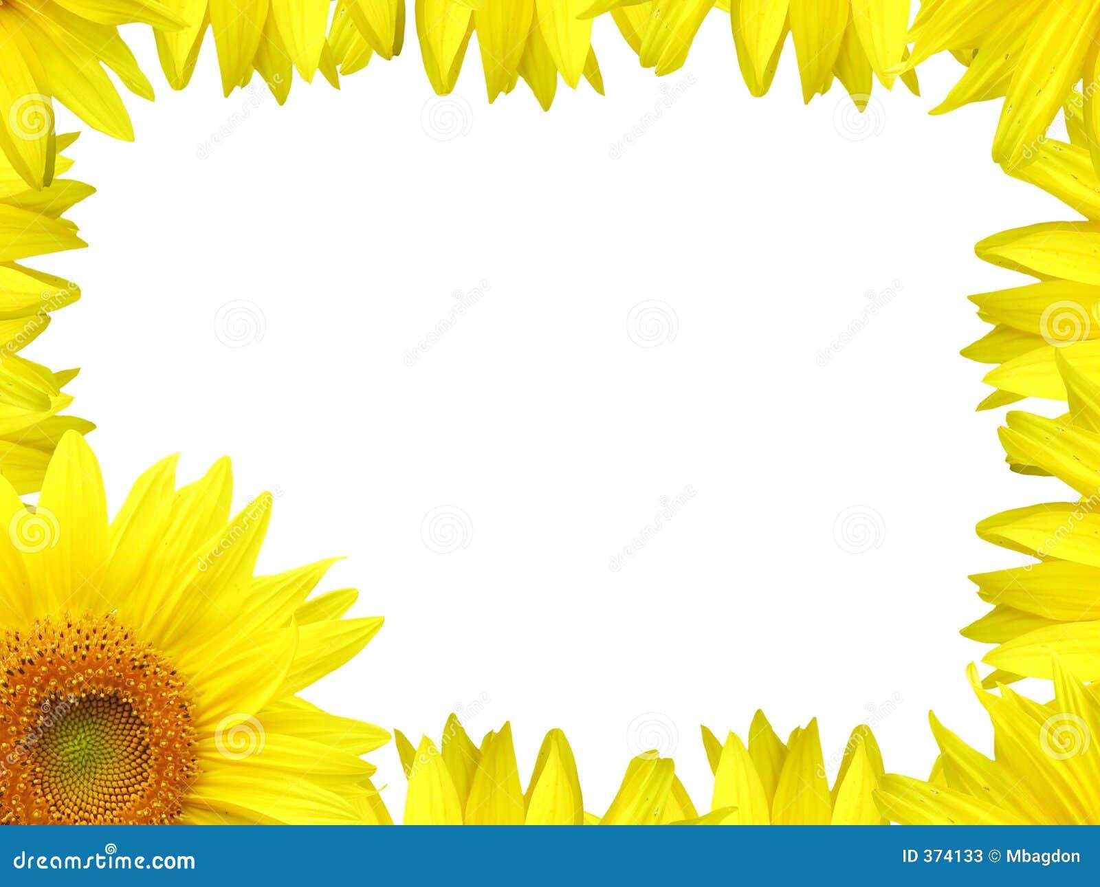 Stock Photos: Flower border