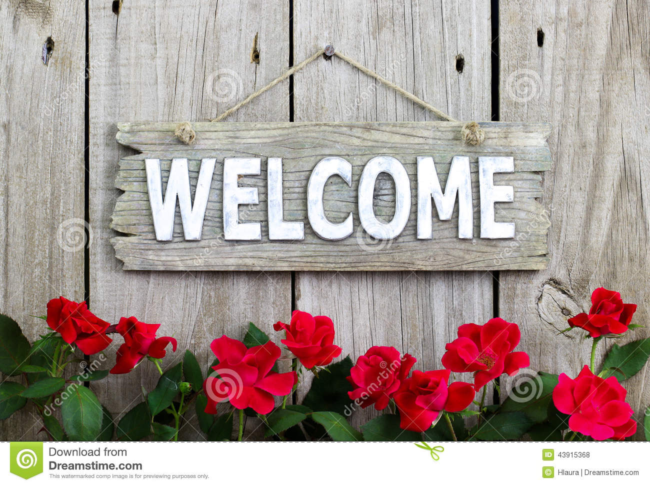 Flower border of red roses by wood welcome sign hanging on distresed wooden fence