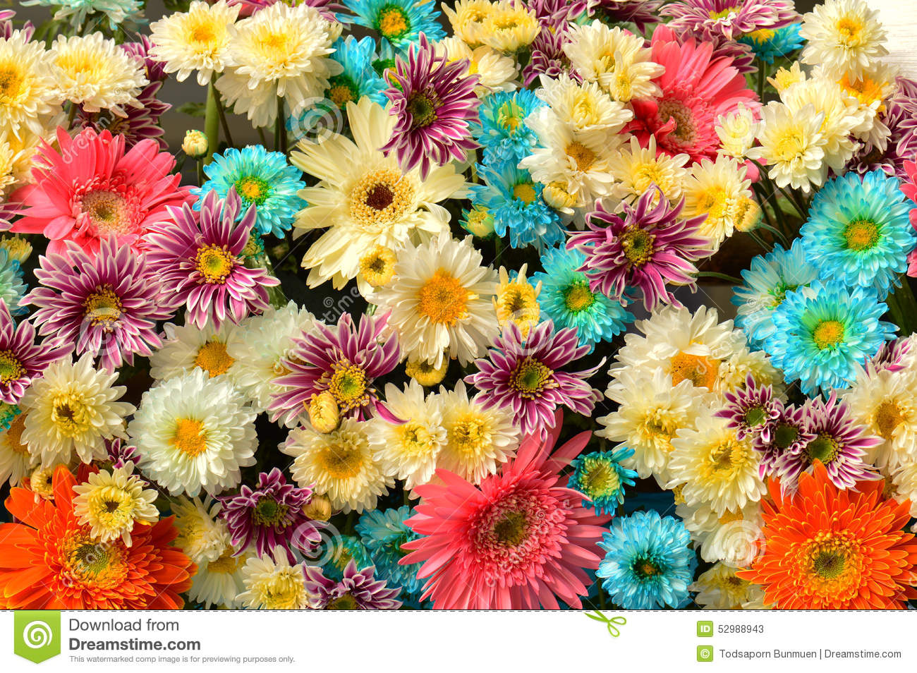 Flower bouquet background stock image. Image of floral - 52988943