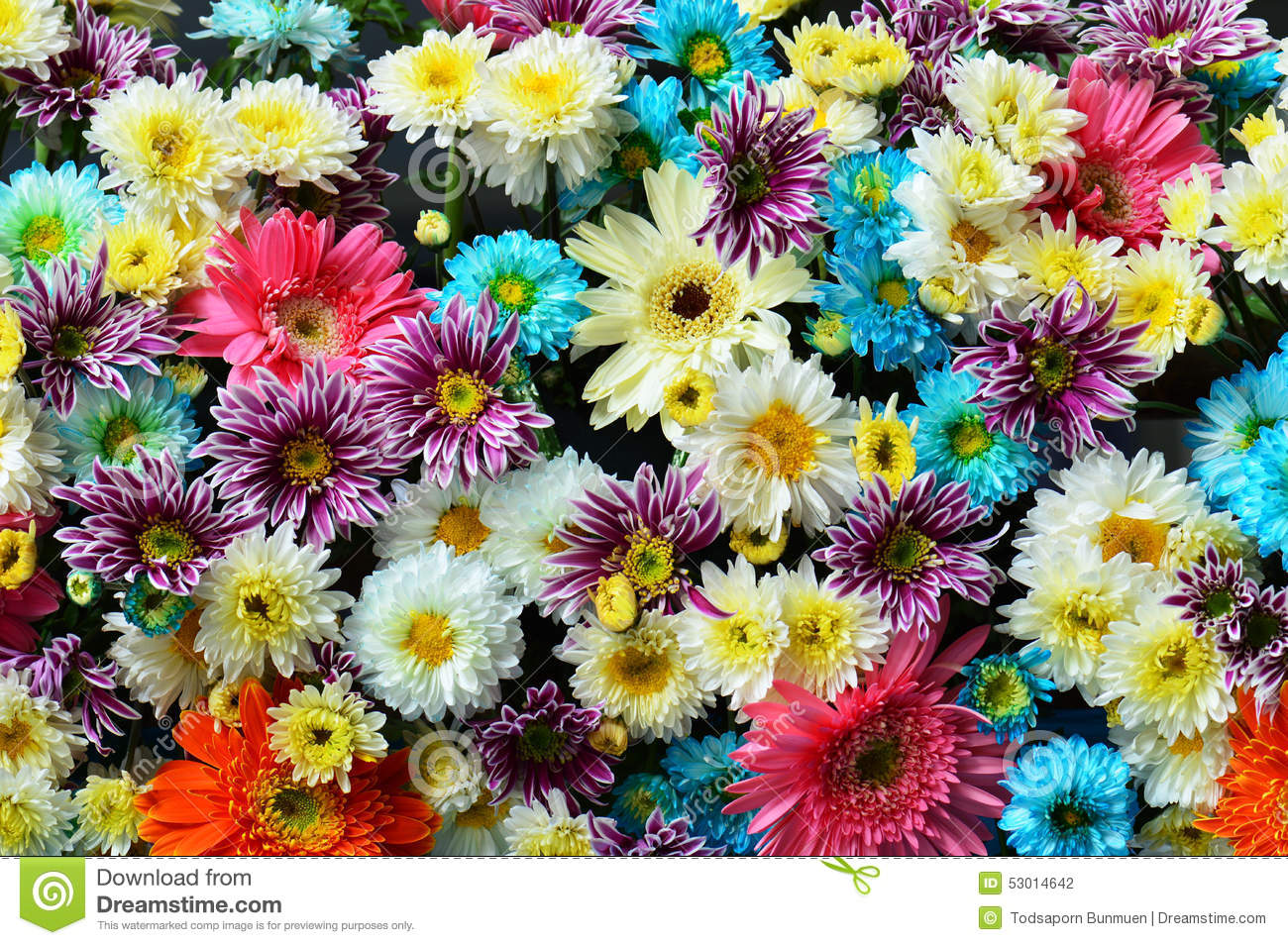 Flower Bouquet Background Beautiful Flowers Stock Photo - Image of ...