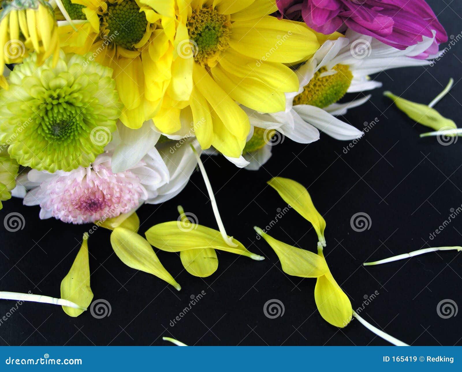 Flower Bouquet with Fallen Petals