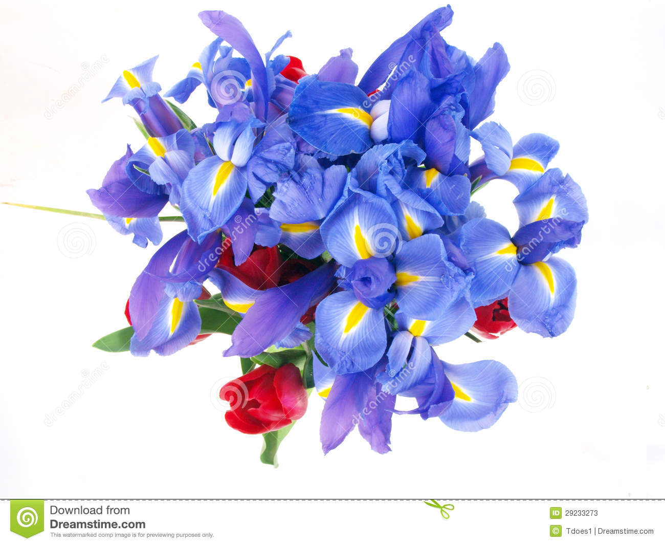 Flower bouquet purple and red stock image image of seasonal flower bouquet purple and red izmirmasajfo