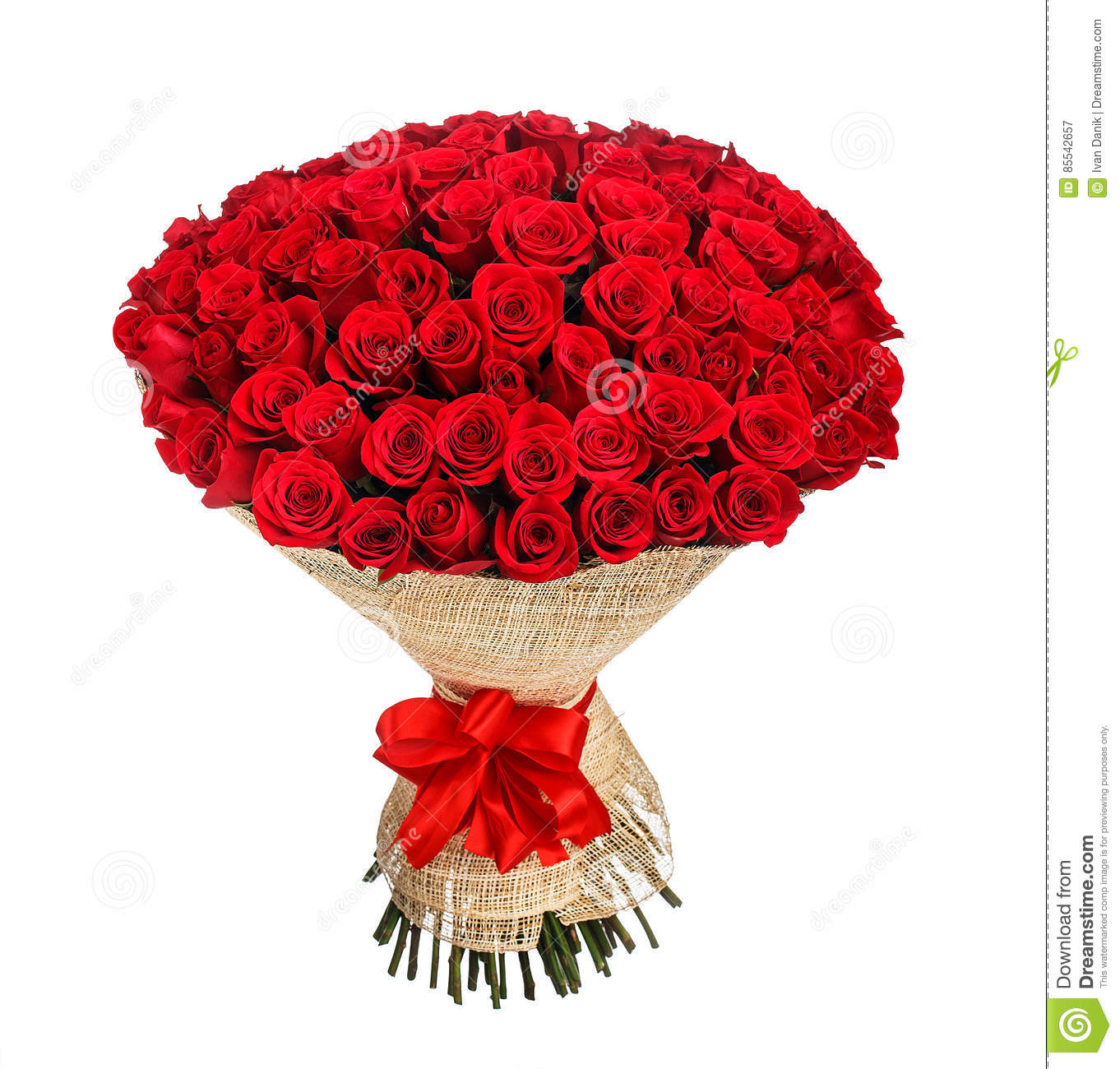 Flower Bouquet Of 100 Red Roses Stock Image - Image of isolated ...
