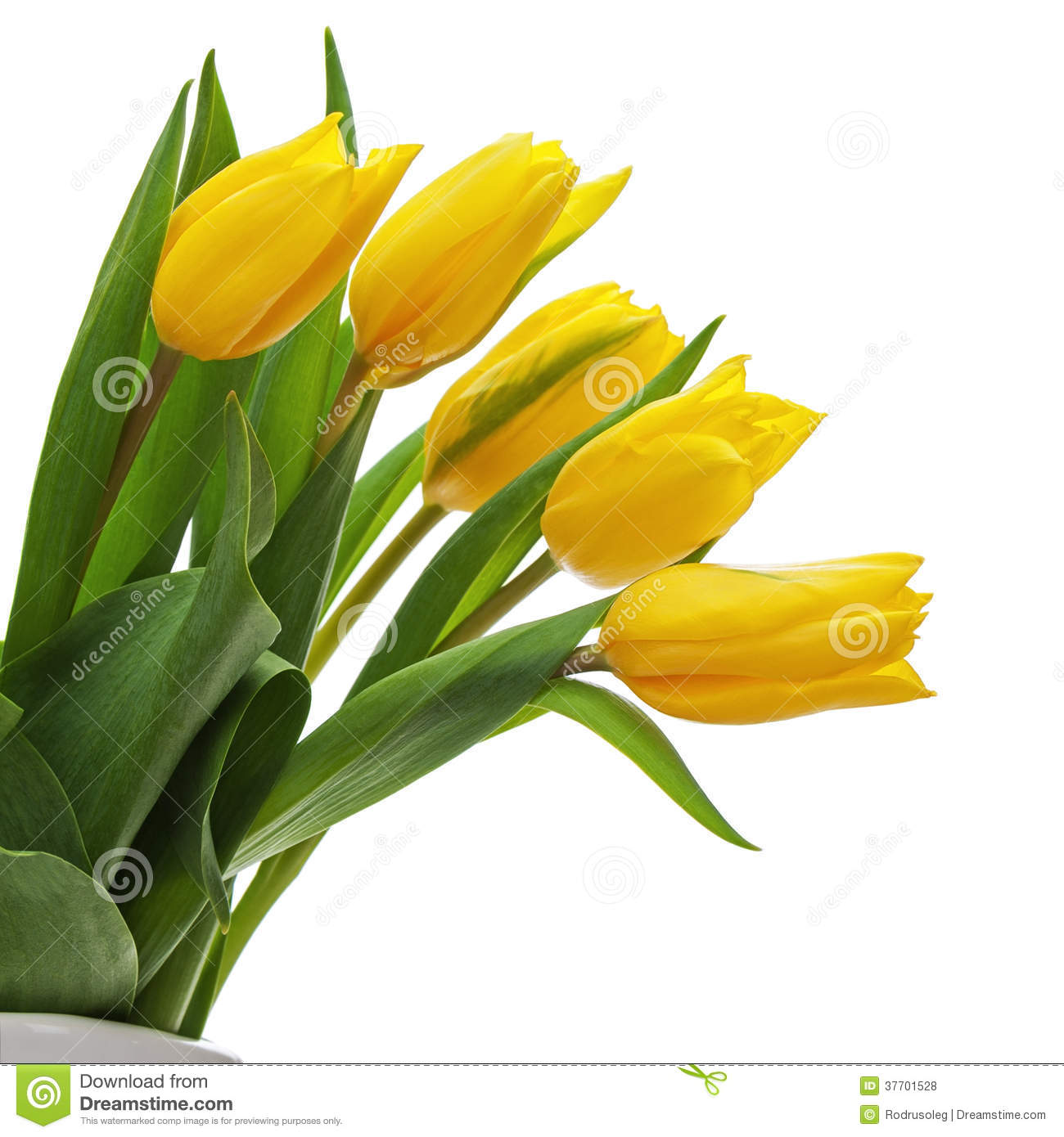 Flower Bouquet From Yellow Tulips In Vase Isolated On