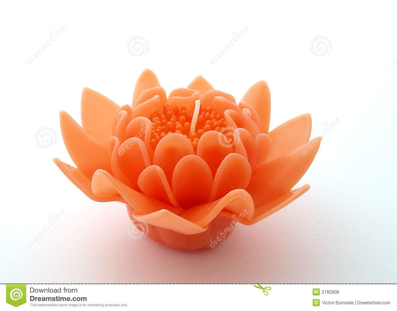 Flower Candle Royalty Free Stock s Image