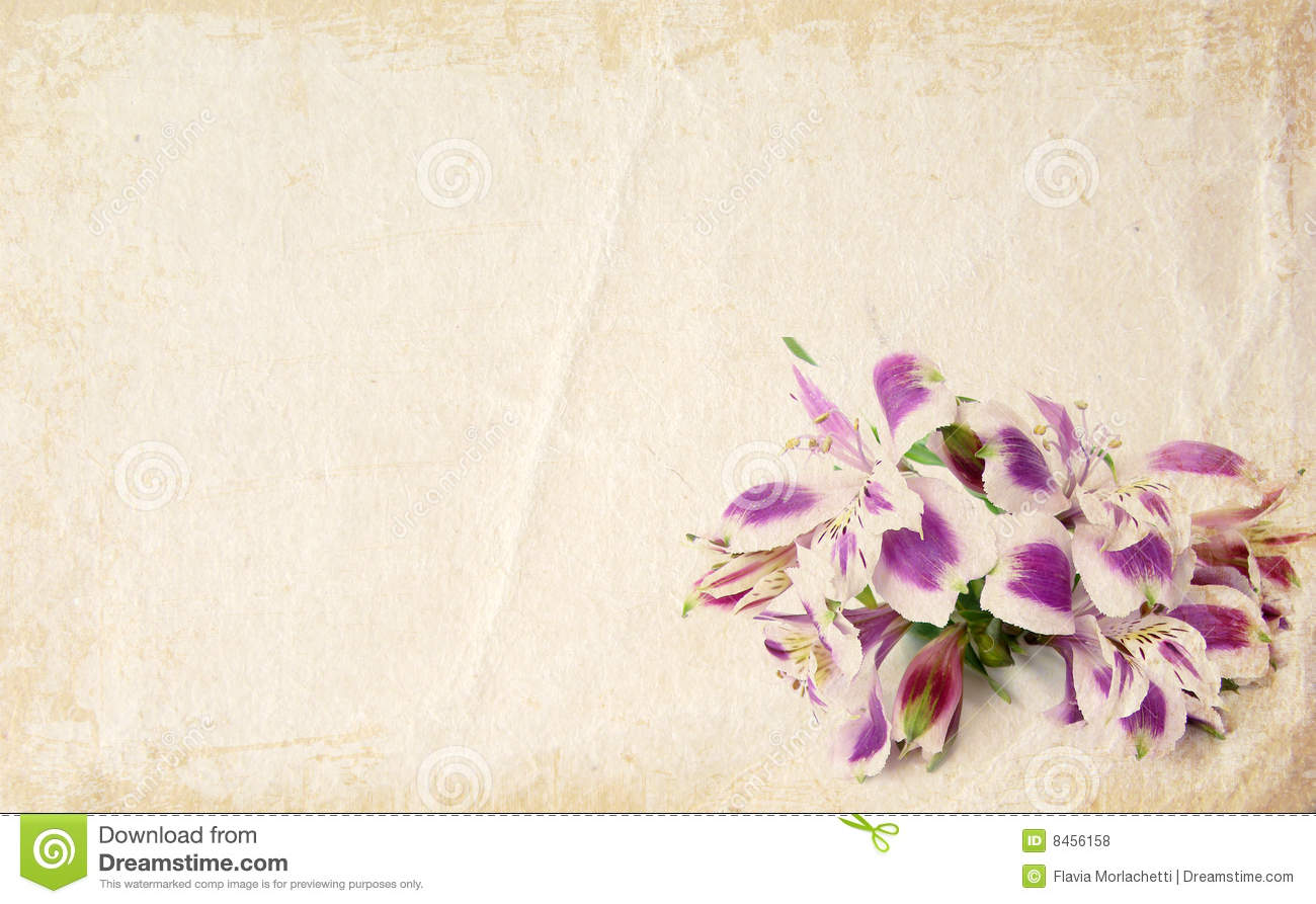 Flower Card Royalty Free Stock Photos Image 8456158