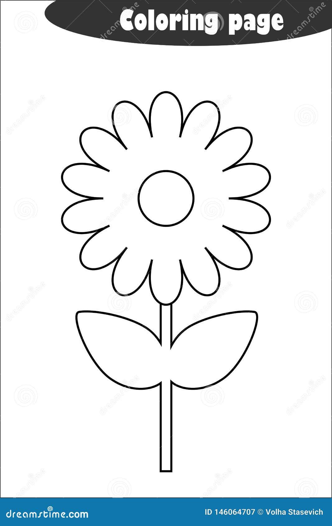 flower coloring pages for adults   Pagine di esercizi, Scienza per ...   1689x1067