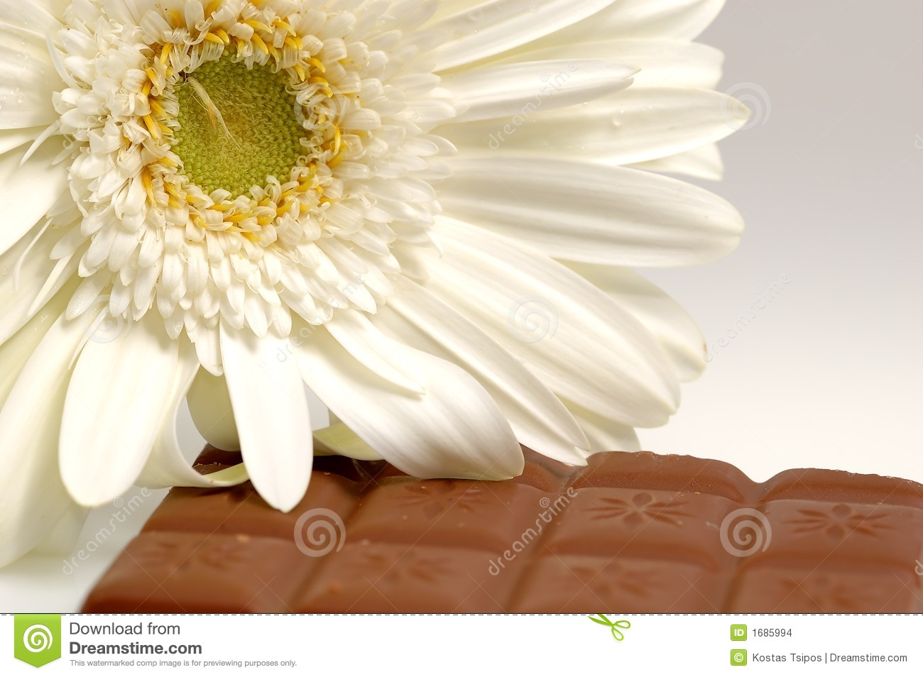 Flower And Chocolate Stock Image