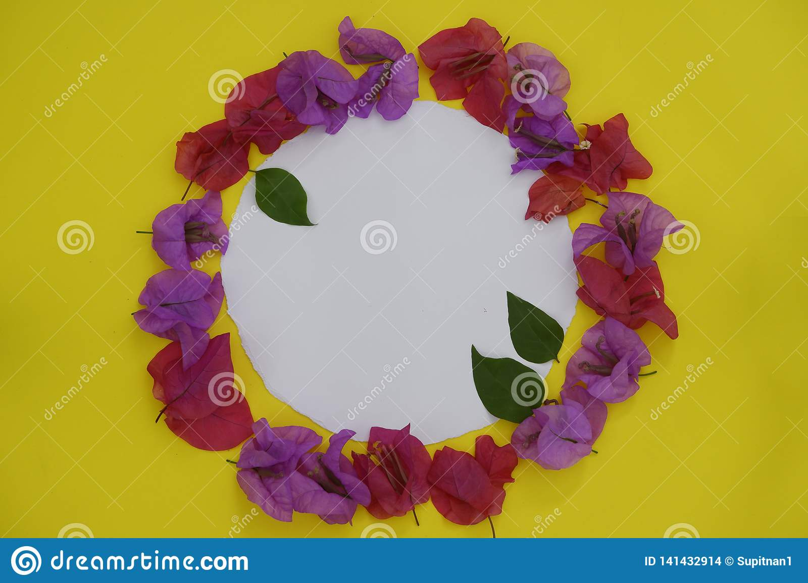 Flower composition. Frame made of fresh colorful flowers with white space for text on yellow background. Flat lay, top view,