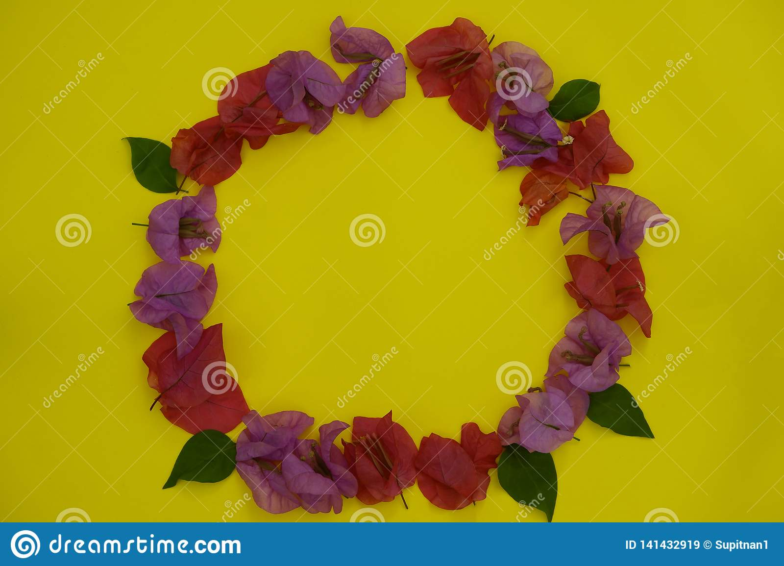 Flower composition. Frame made of fresh colorful flowers on yellow background. Flat lay, top view, rounded