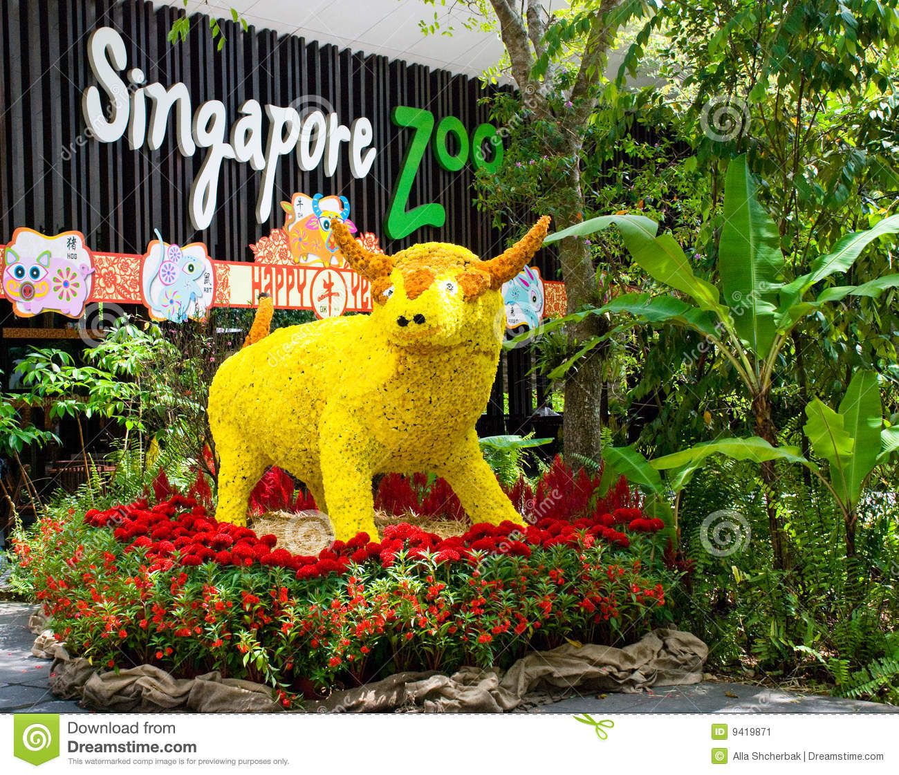 Flower Cow in Singapore Zoo