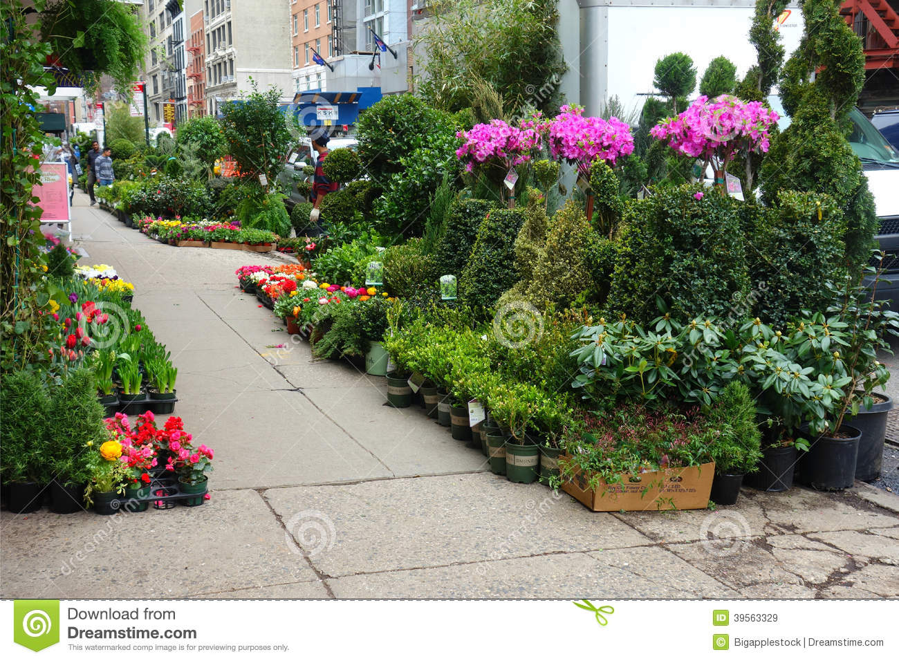 New York City Flower District Editorial Stock Image