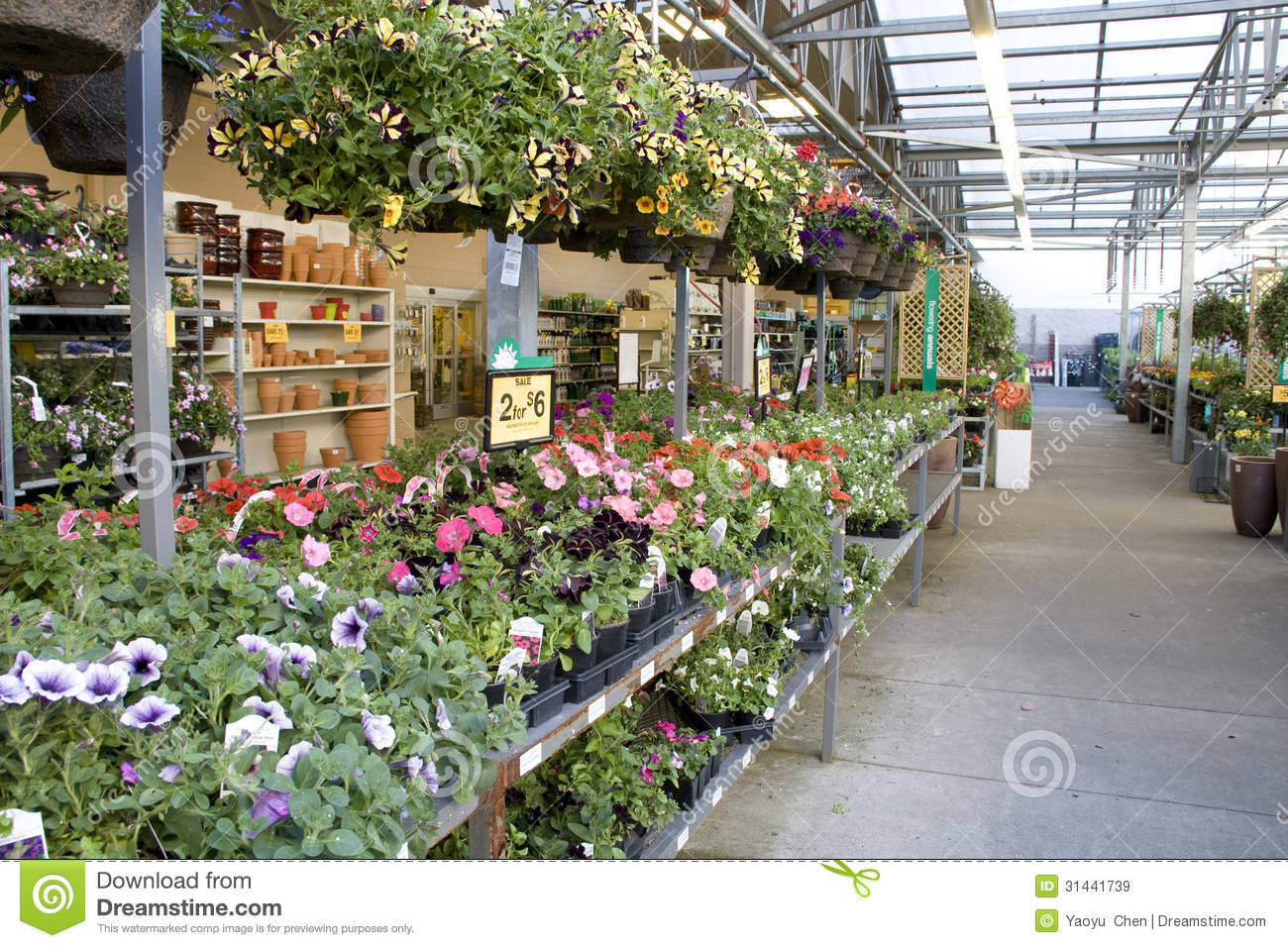 Flower floral shop store stock image image of hanging 31441739 flower floral shop store izmirmasajfo