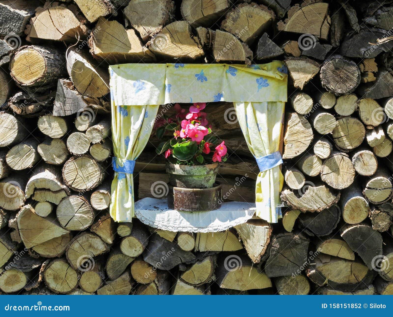 Flower in a flower pot in a woodpile