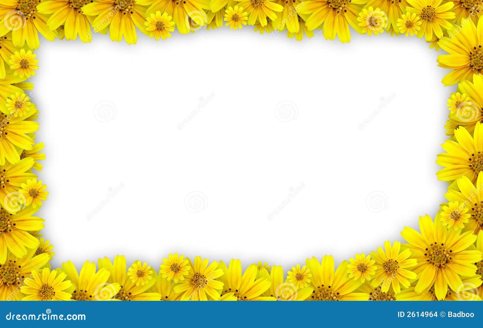 Flower frame - coreopsis lanceolata (tickseed) used for floral frame ...