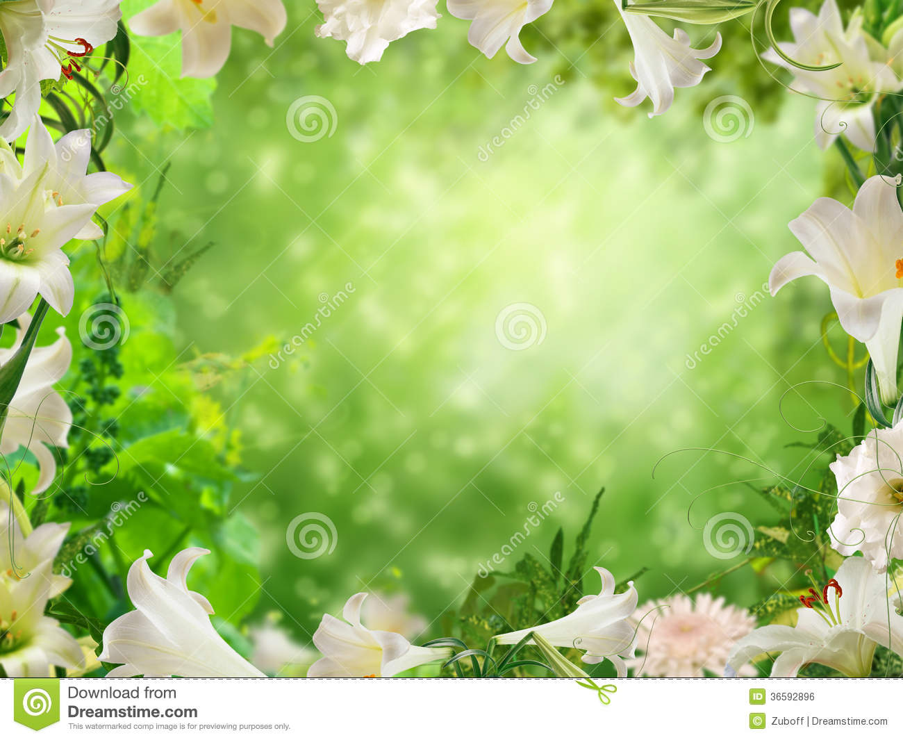 Beautiful flower photo frames choice image flower wallpaper hd old fashioned beautiful flower picture frames elaboration picture contemporary beautiful flower picture frames festooning wedding izmirmasajfo izmirmasajfo