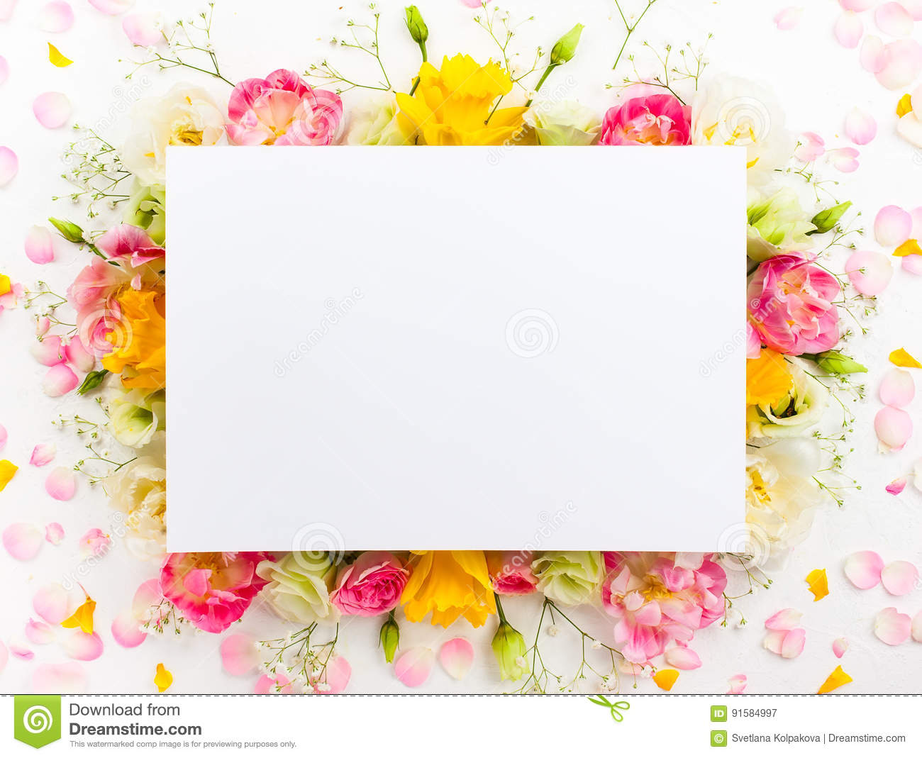 Flower frame stock image. Image of beautiful, love, birthday - 91584997