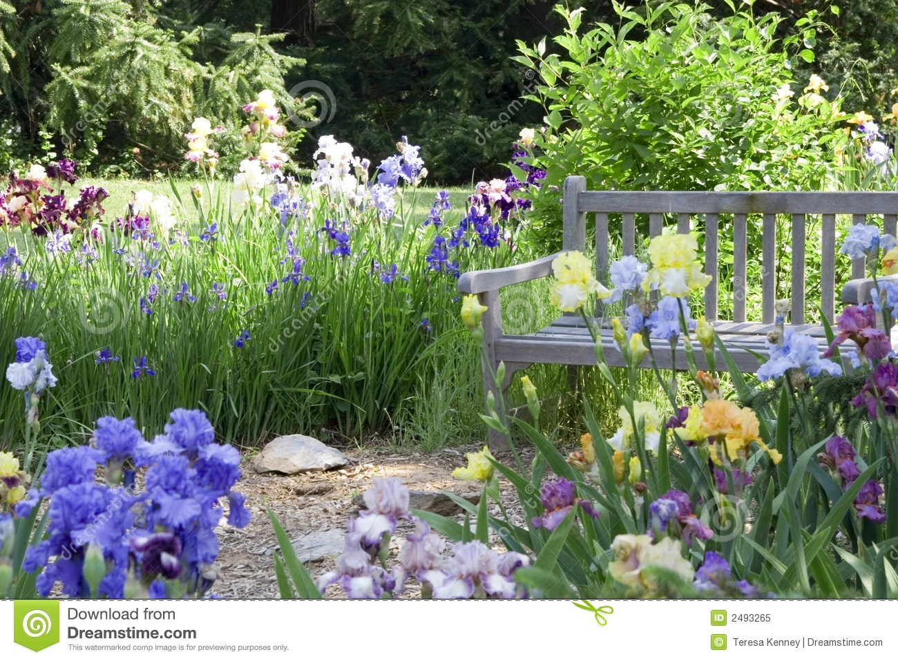 Flower garden royalty free stock photo image 2493265 for Flowers landscape gardening