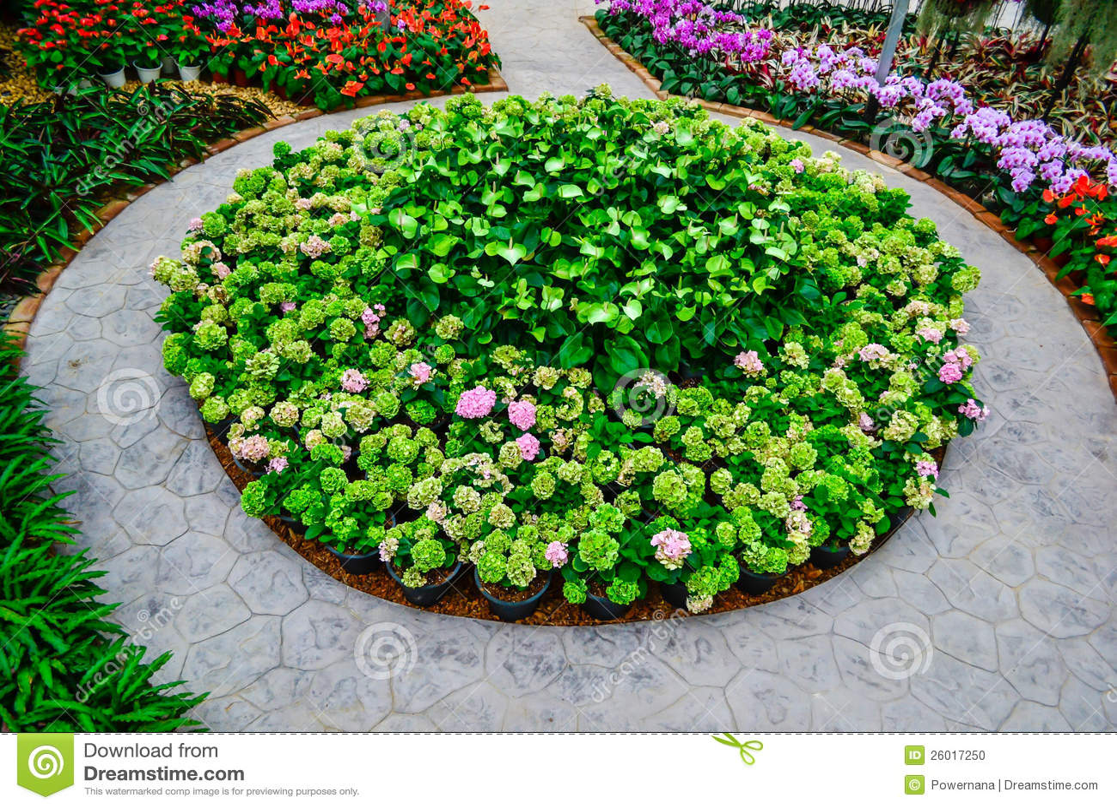 Flower Garden Stock Photo Image Of Pretty Greenery 26017250