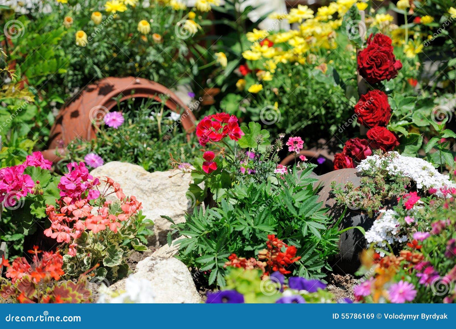 Flower Garden Background Stock Photo Image - Colorful flower garden background