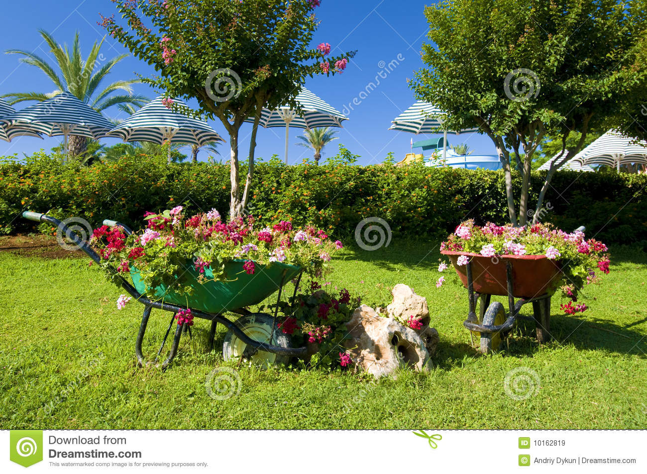 Flower garden with carts stock image. Image of city, gardening ...