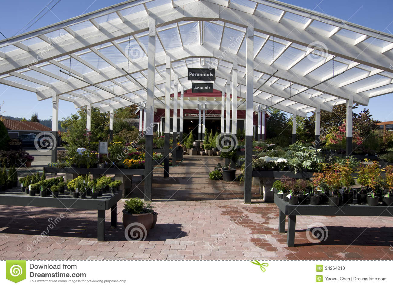 Flower garden center shop editorial image image 34264210 for Garden center designs