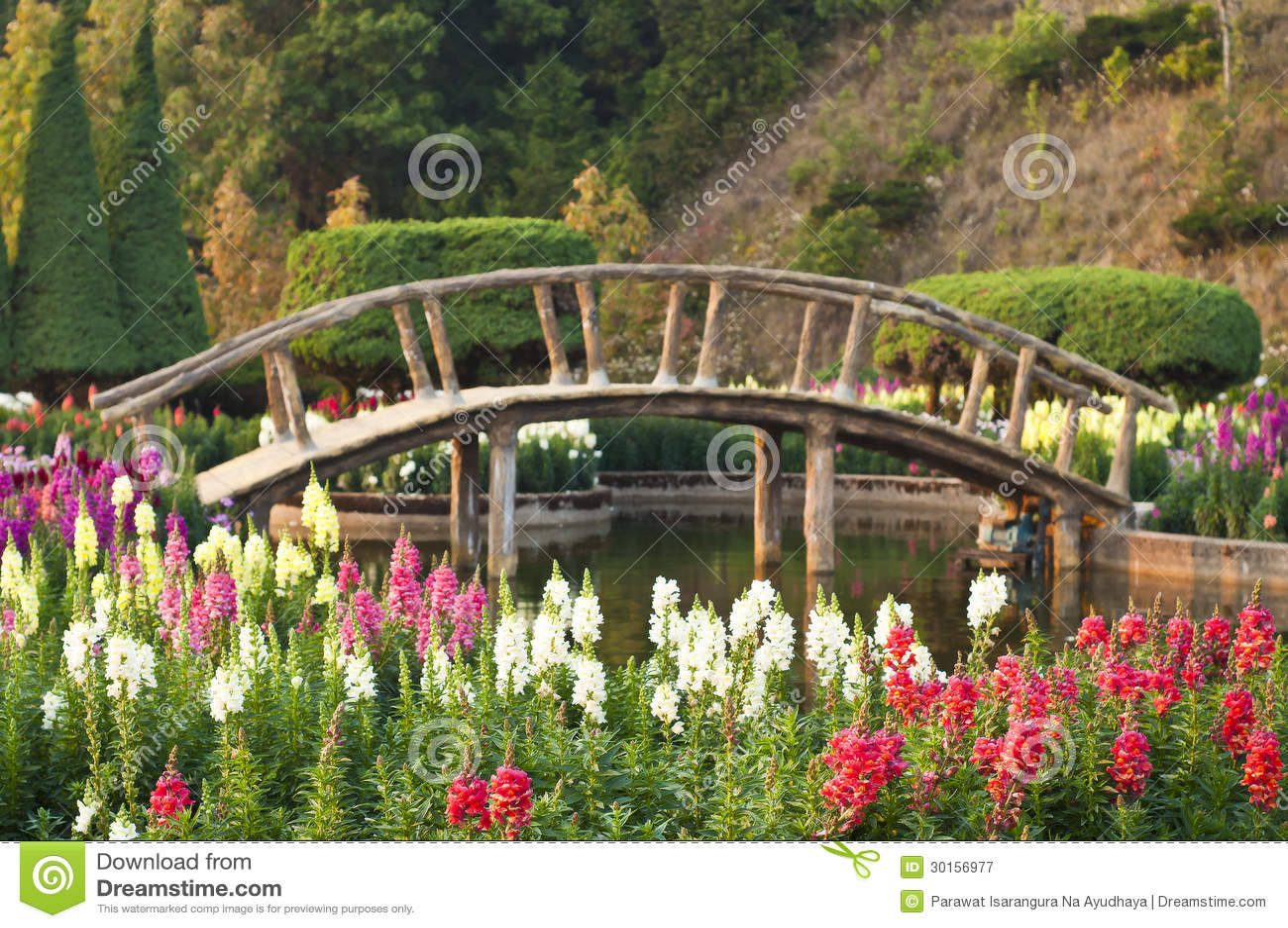 Japanese Style Garden Bridges Flower Garden Japanese Style Royalty Free Stock Photography