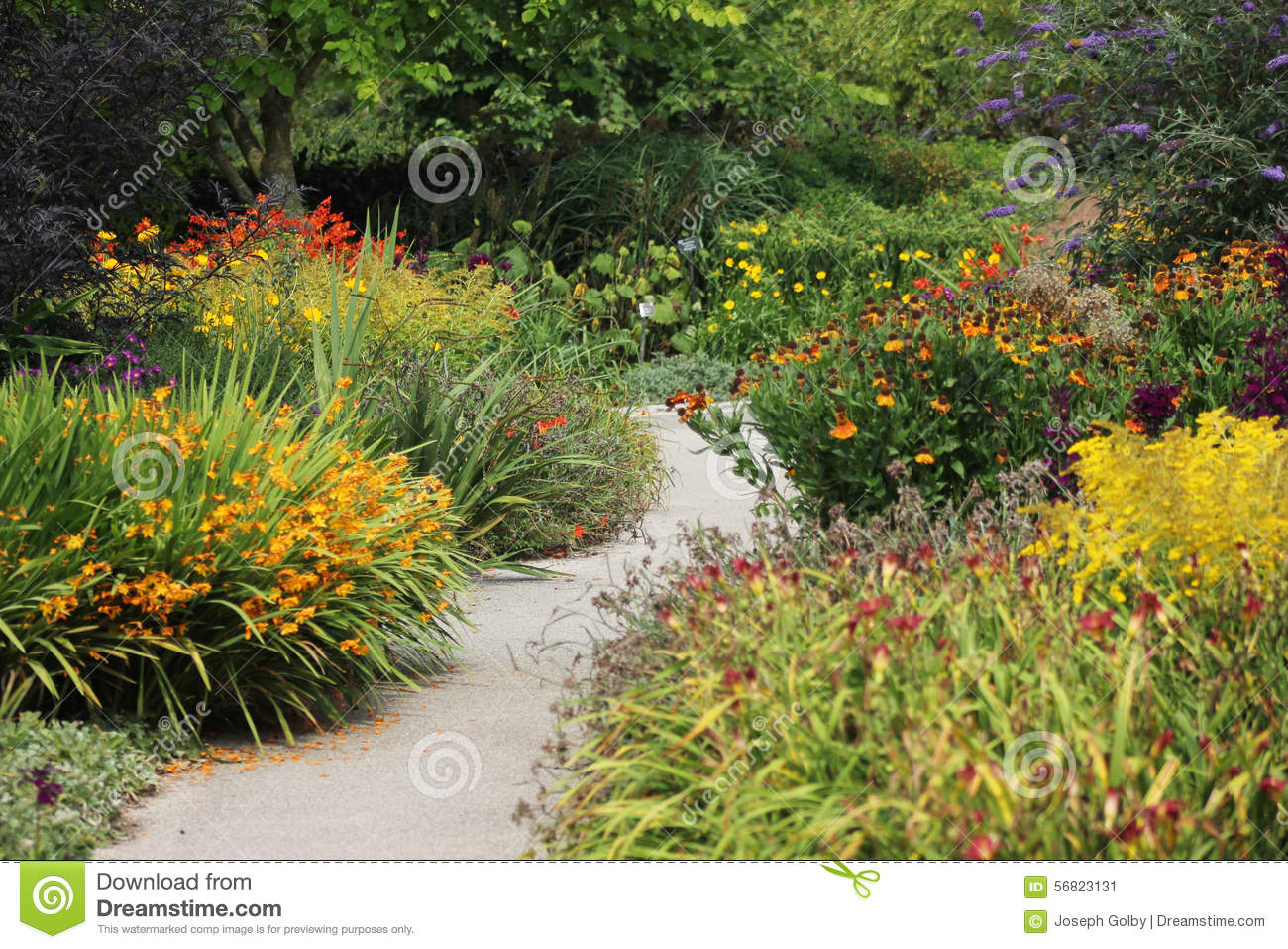 Flower Garden Path flower garden with path stock photo - image: 56823131