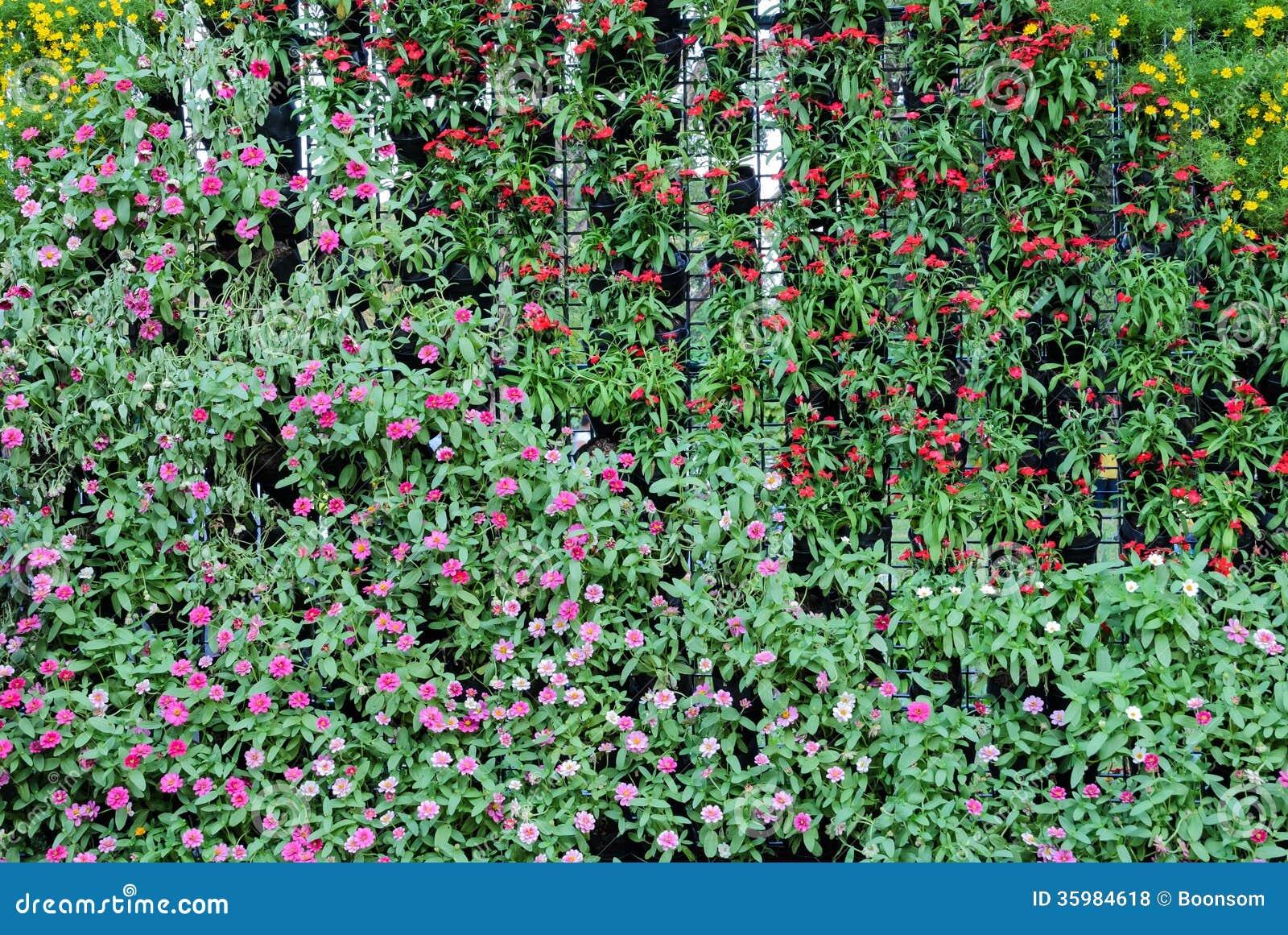 Flower garden wall royalty free stock photos image 35984618 for Flower wall garden