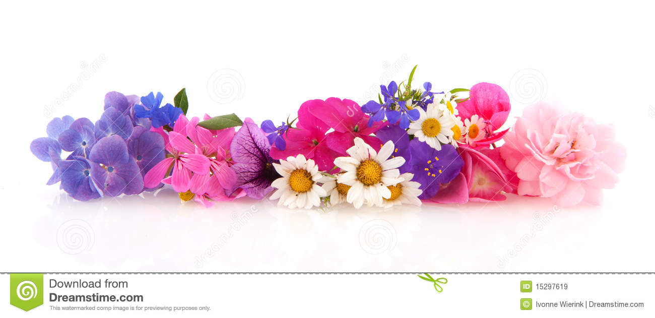 Flower Garland Stock Image Image Of Daisies Roses