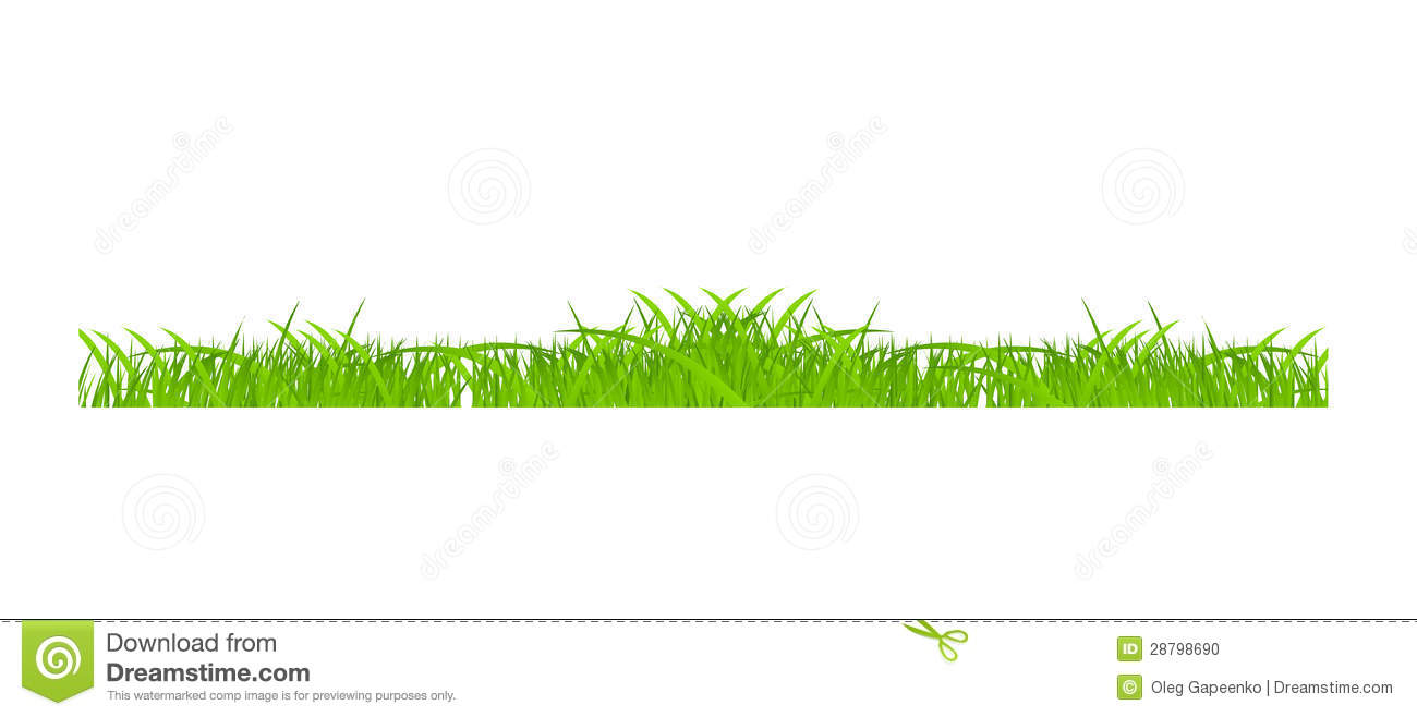Flower and grass borders set vector illustration stock for Best grasses for borders